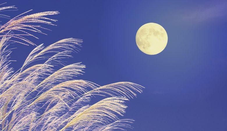 中秋の名月を楽しむ